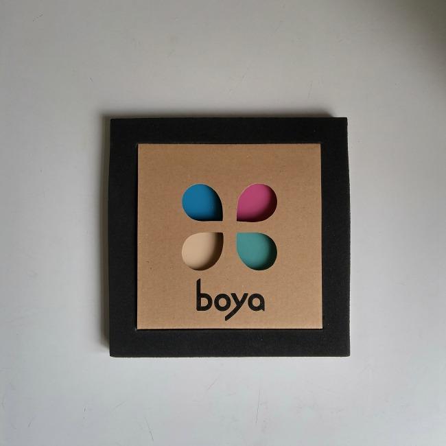 Boya crayons Vintage